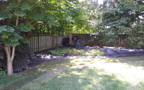 backyard garden with fabric 1