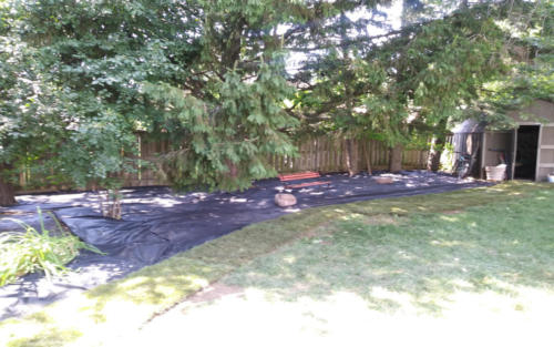 backyard garden with fabric 2