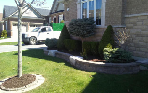 front bush pruning