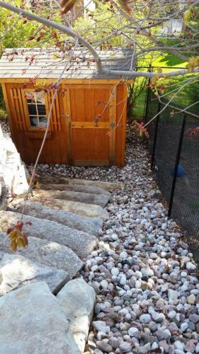 Backyard Landscaping Steps After