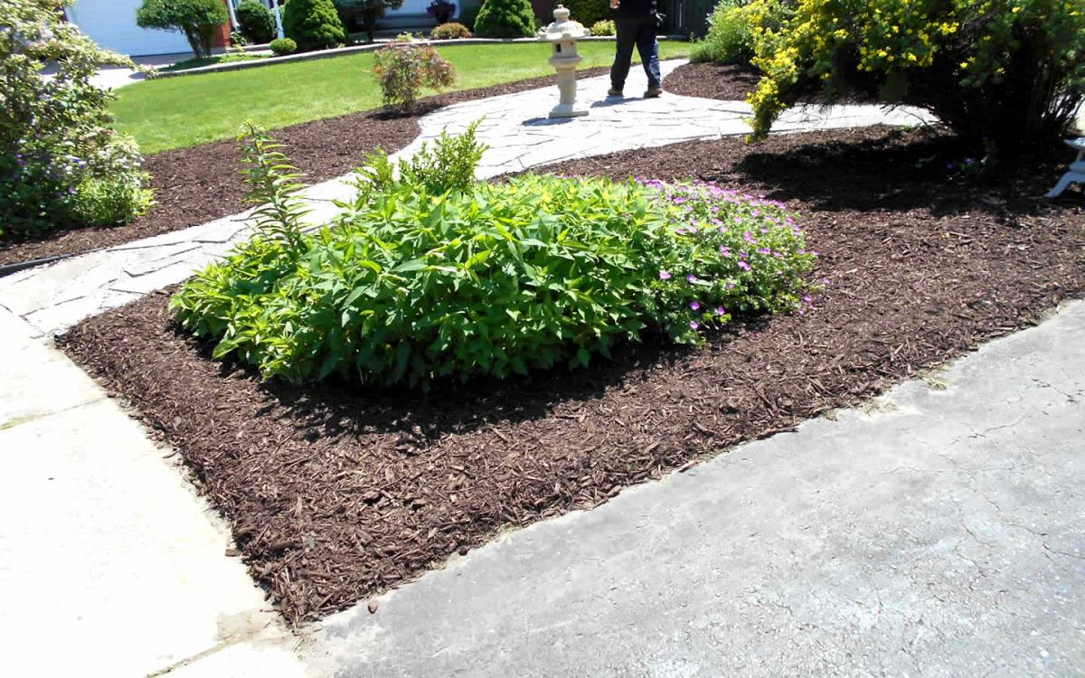 Front Yard Landscaping Flag Stone  Mulch After3