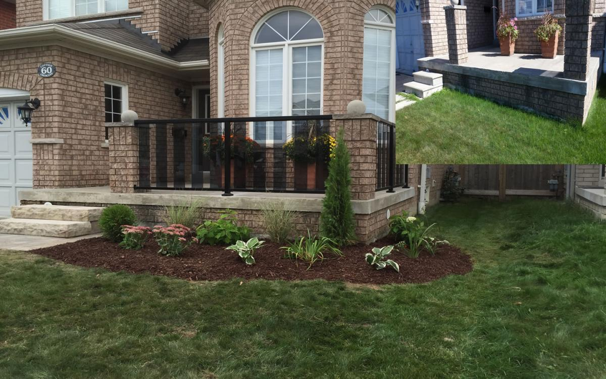 Front Yard Landscaping New Garden