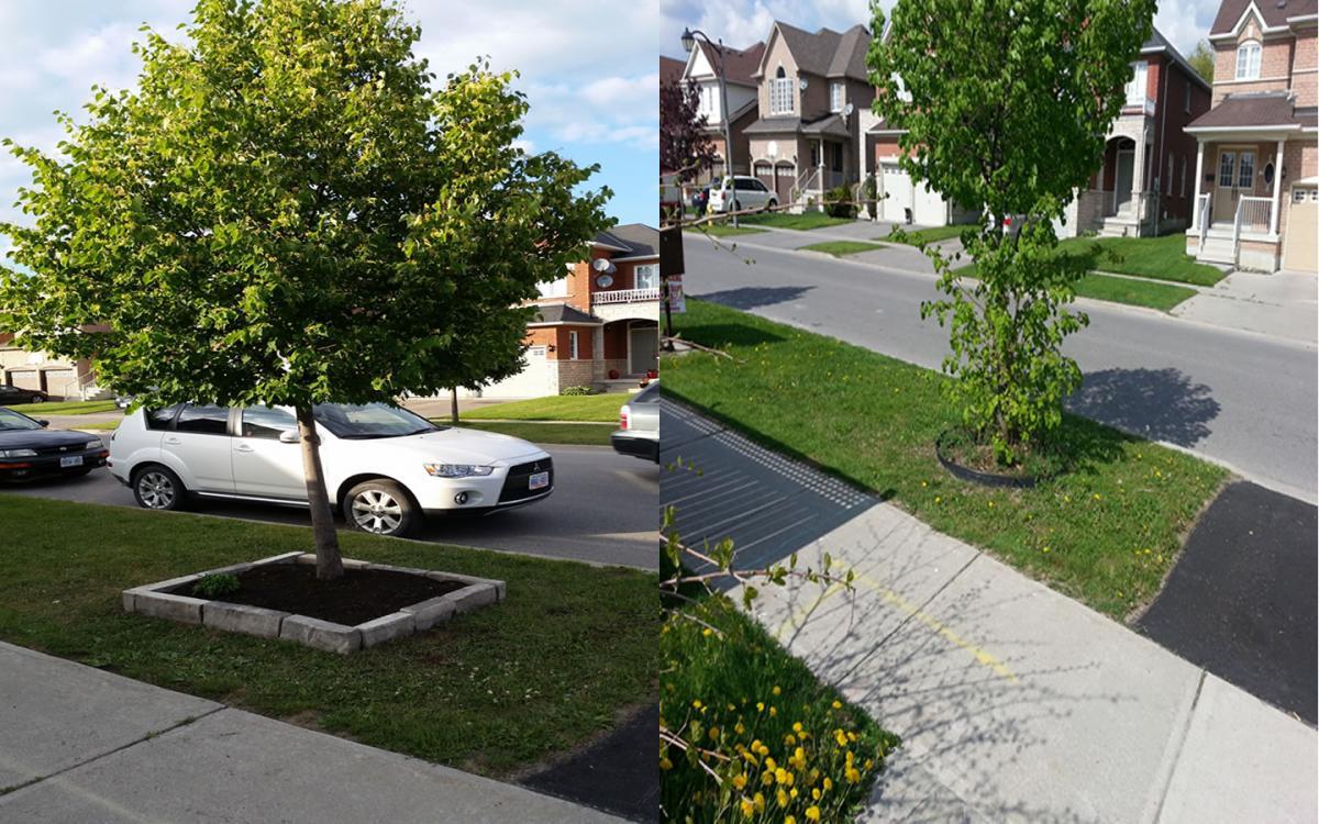 Landscaping Gardening Square Edge Tree Flower Bed