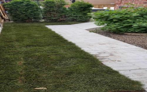 Patio Stone Path