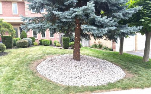 Spruce Tree River Stone Base (1)