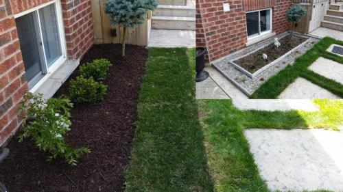 Backyard Lawn Care Sod After 2