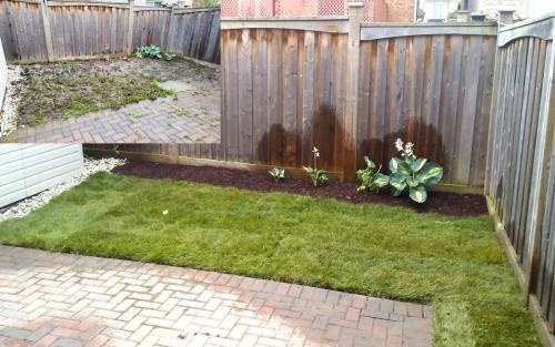 Backyard Sod  Garden Installation After