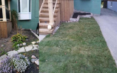 Front Yard Landscaping Sod