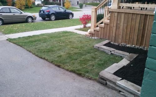 Front Yard Landscaping Sod 3