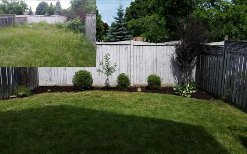 Garden Bed Lawn Clean-Up