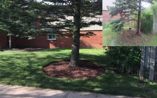 Landscaping Gardening and Sod 5