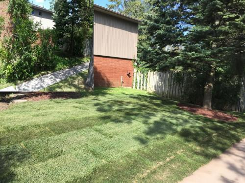 Landscaping Gardening and Sod 6