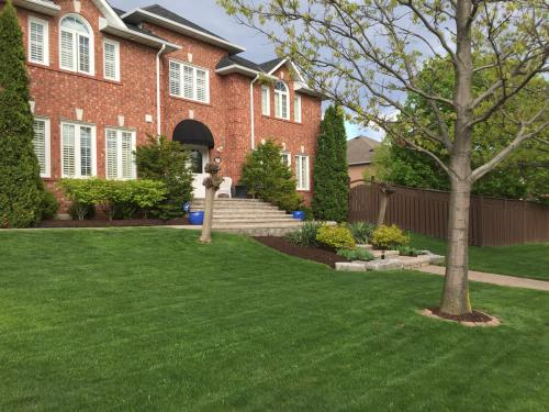 Lawn Care Mow Cutting Grass 2