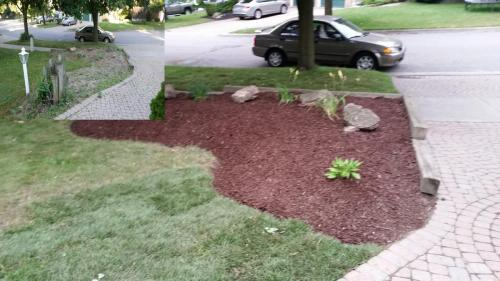 Lawn Care New Sod Turf After