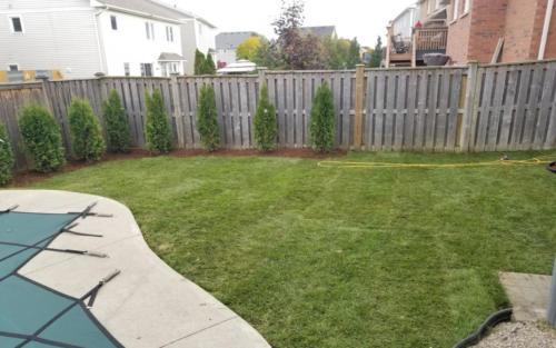 backyard pool sod grading