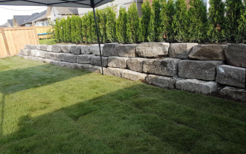 backyard retaining wall sod after
