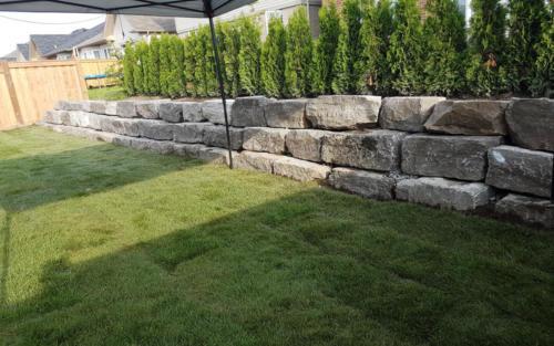 backyard retaining wall sod after
