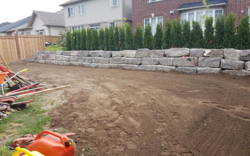 backyard retaining wall sod before