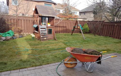 backyard sod play gym