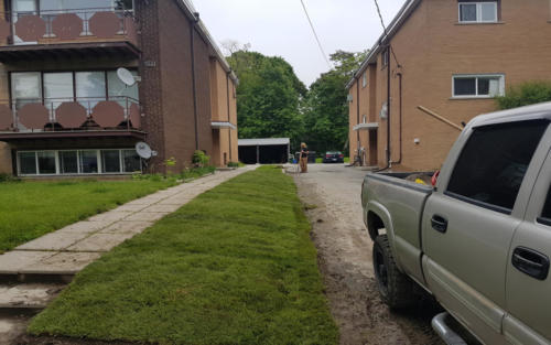 commercial sod installation