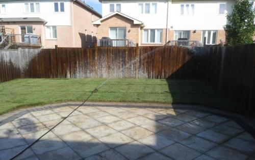 small backyard sod