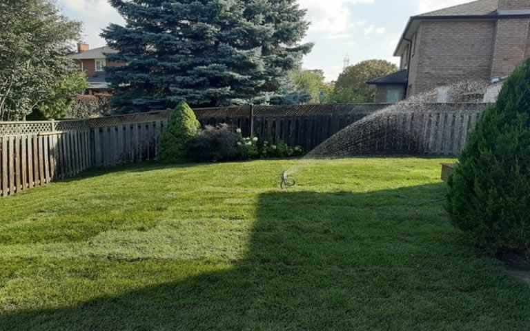 backyard sod turf installation